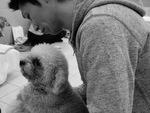 犬の整体師認定201803