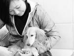 犬の整体師認定201803-3