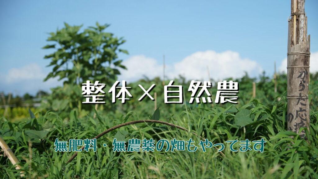 整体×自然農。当たり前に循環する「自然農」のような整体を